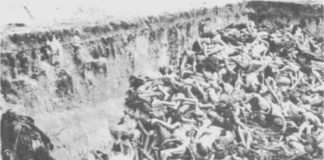 Mass Grave in Bergen-Belsen camp