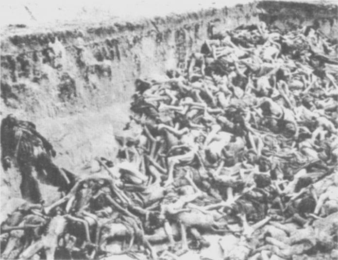Massa graf in Bergen-Belsen